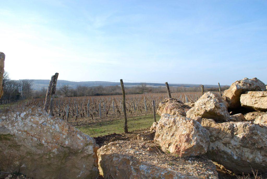 Pouilly Fumé de rotsen en de wijngaard van La Roche