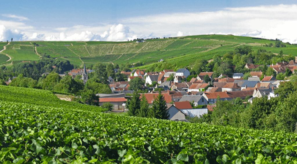 wijngaarden rondom het gehucht Bué nabij Sancerre