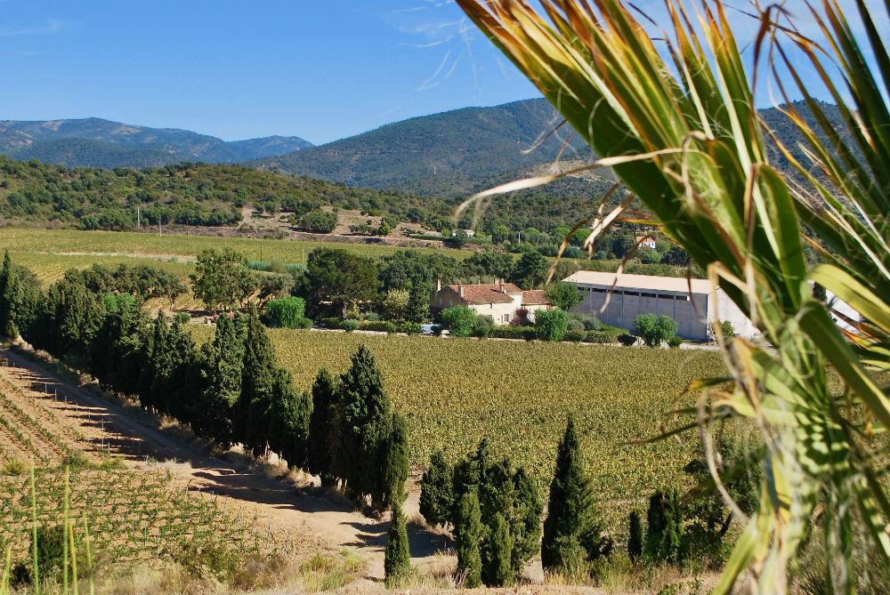 De oude Mas en de nieuwe wijnmakerij gezien vanaf de heuvels van het domein van Angueiroun