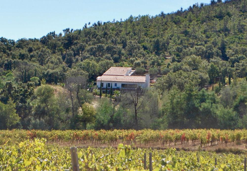Villa Angueiroun met de wijngaarden op de voorgrond