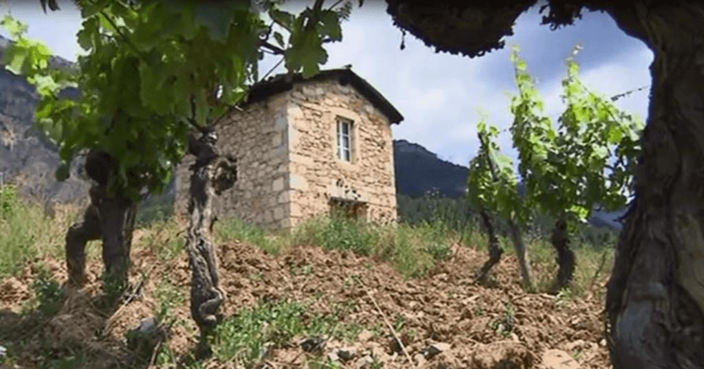 klein stenen huisje in de wijngaard van domaine de Magord