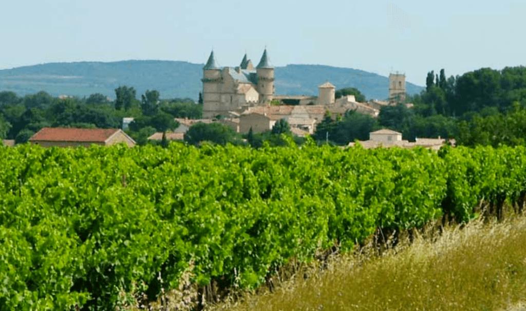 le Château de Margon van Abeilhan met een wijngaard op de voorgrond