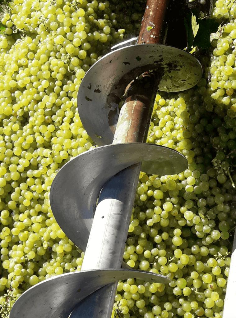 de persschroef die de druiven naar boven transportteerd