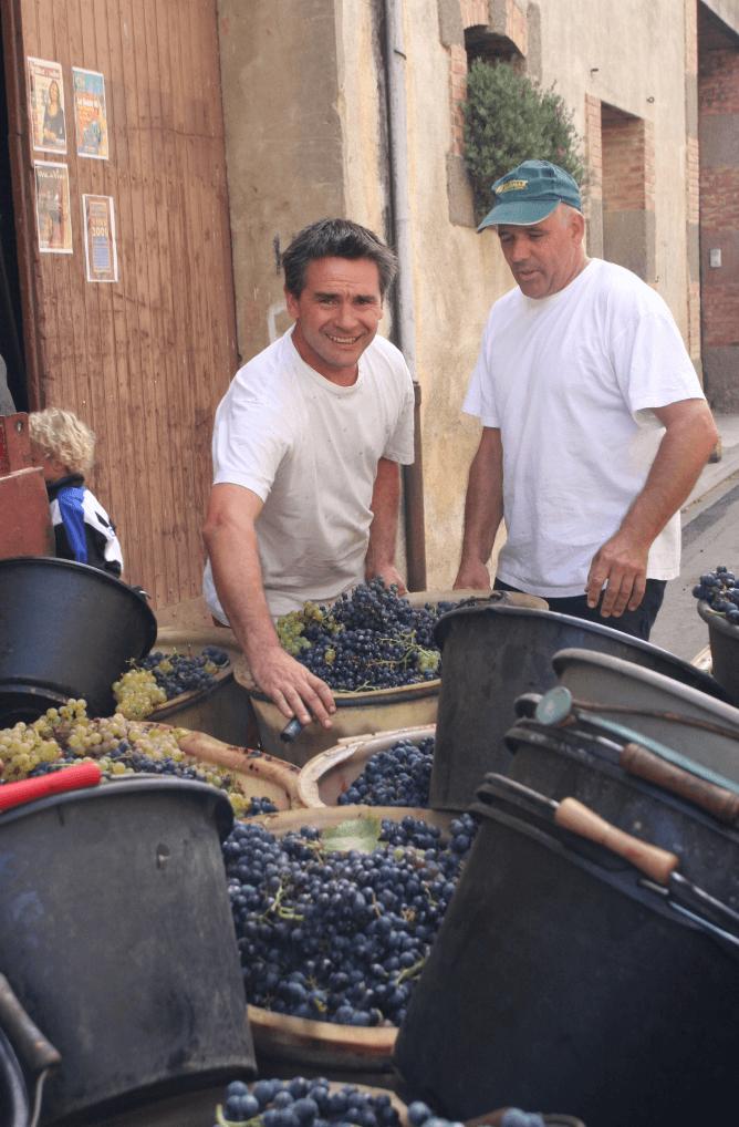 plukkers van les filles de Septembre staan bij de kar vol geoogste druiven