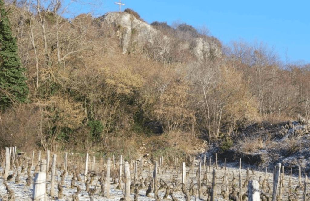 premier cru wijngaard Santenay