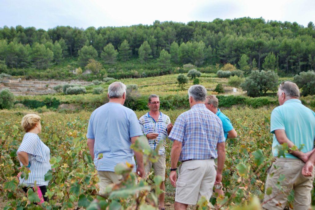 Wijnreisgezelschap krijgt in de wijngaard uitleg van Guilhem Tournier