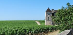 Bourgogne - het kasteel Clos de Vougeot