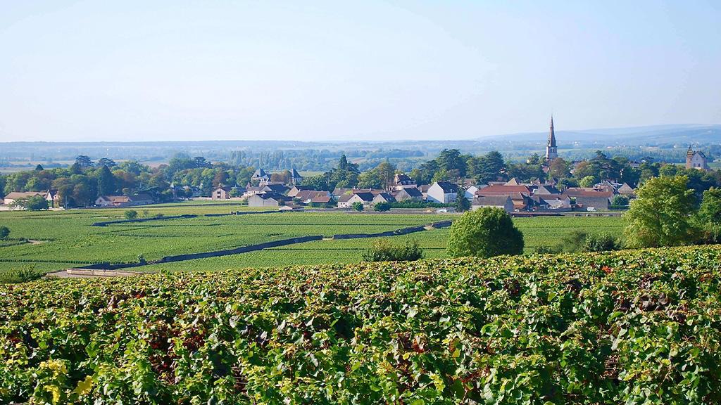 uitzicht op het dorpje Meursault
