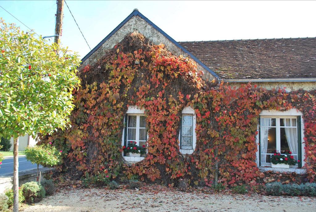 Het huis van domaine de la Rochette begroeid met wingerd