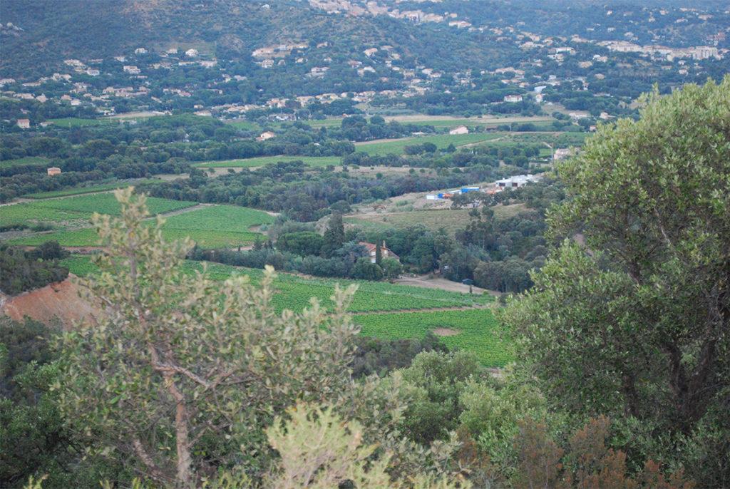Uitzicht over het domein van Château Angueiroun in de Provence