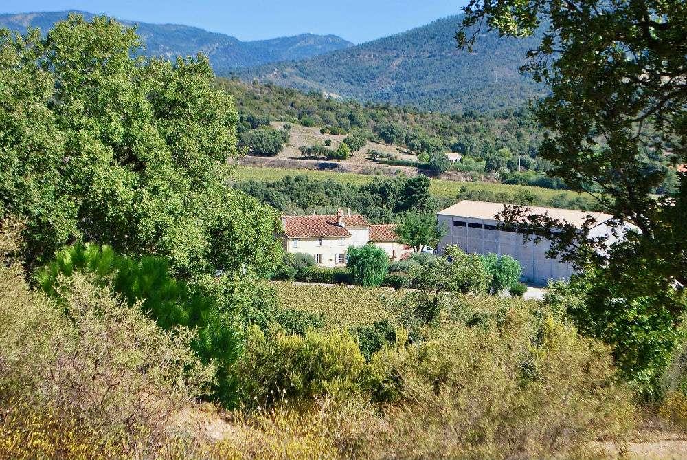 De wijnmakerij gezien vanaf de heuvels van Château Angueiroun