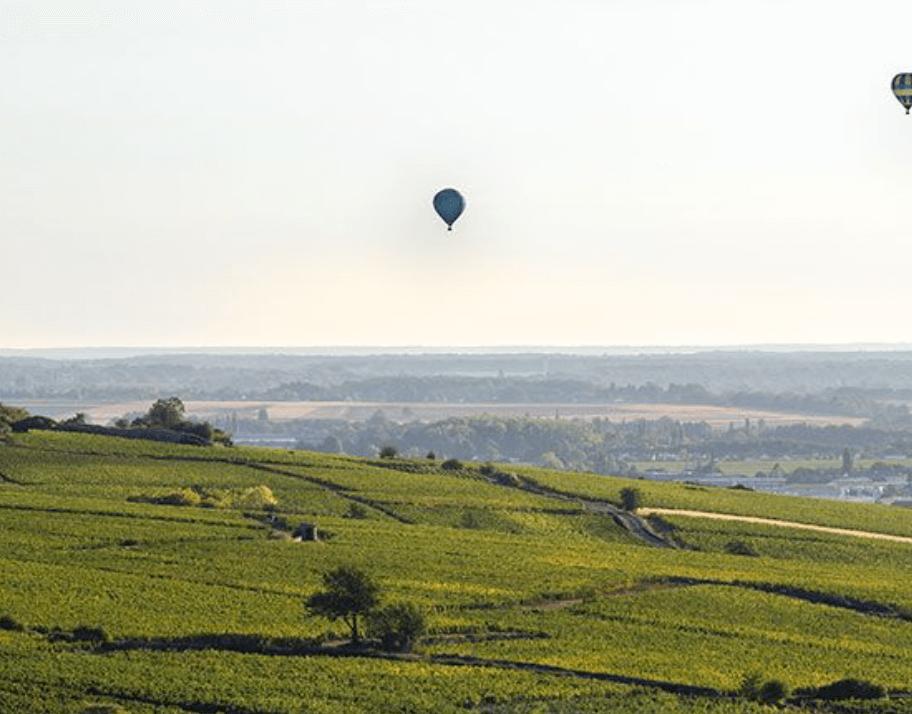 Luchtballonnen boven de wijngaarden van domaine Perrin